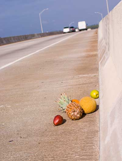 fruit on the road