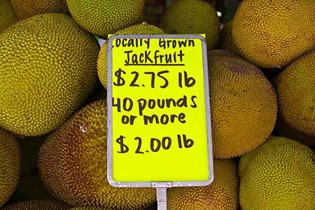 Robert is Here fruit stand - jackfruit