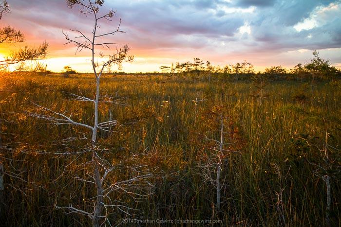 Everglades Pa-hay-okee Sunset
