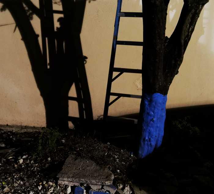 blue shadow blue