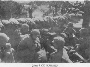 A Sand Bagged Hill Top Strong Point on Peleliu with 75mm Pack Howitzer. Both Sand Bags and 75mm Were Delivered by Tramway.