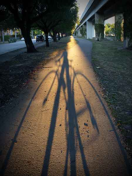bicycle shadow