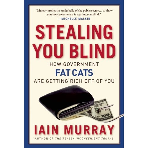 iain-murray-stealing-you-blind-cover
