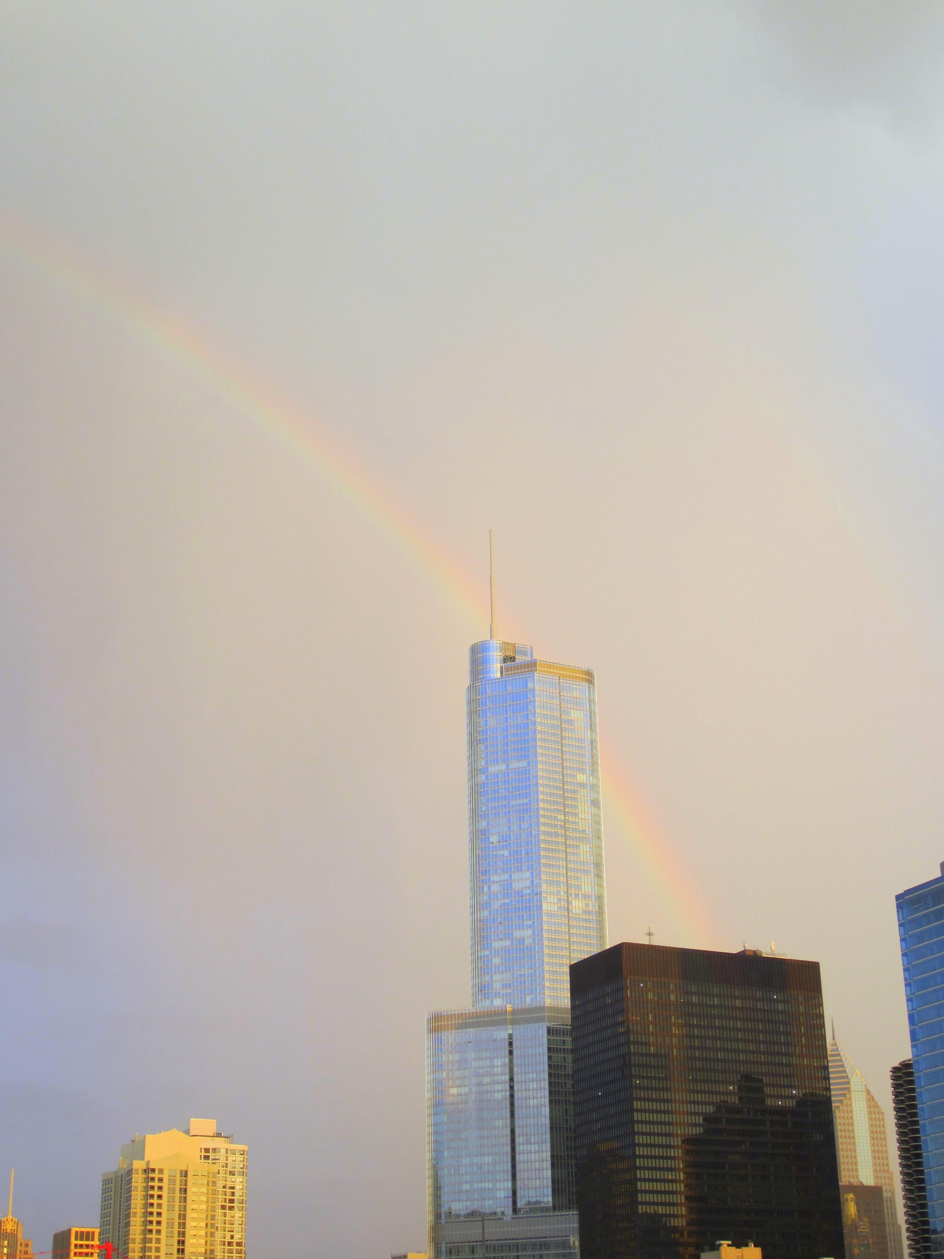 rainbow_over_trump